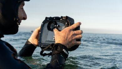 Photo of Hasselblad lança nova solução de caixa subaquática Aquatech para o X1D II 50C