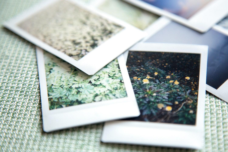 Photo of Como o uso de câmeras instantâneas pode melhorar sua fotografia
