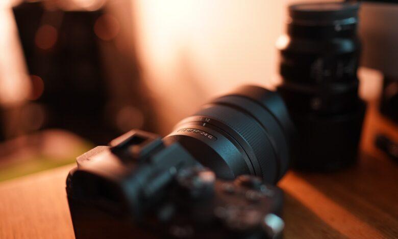 Desafio de Fotografia Semanal - Profundidade de Campo Rasa