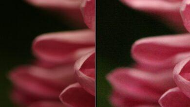 Photo of O que é ISO? | Configurações em fotografia digital