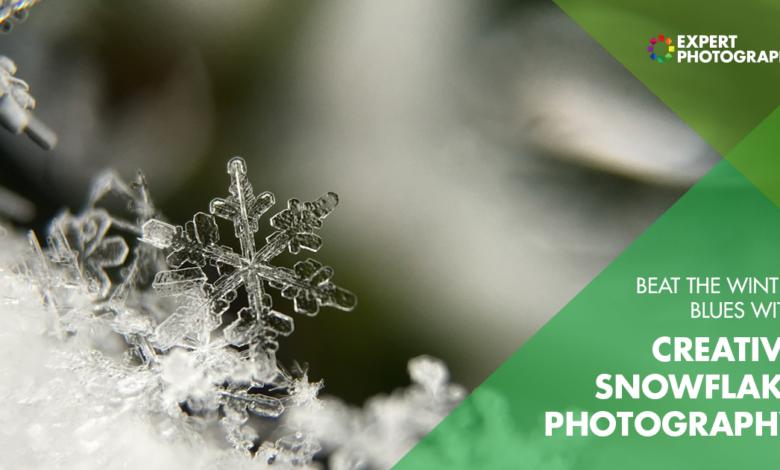 Como tirar fotos de floco de neve (incríveis macro flocos de neve!)