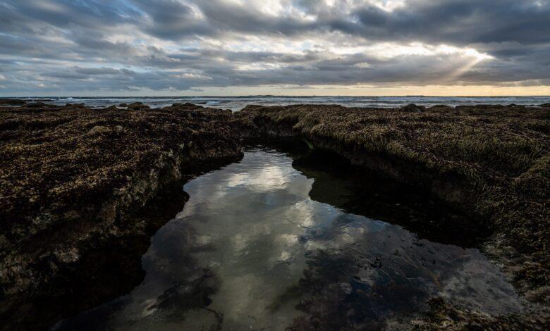Desafio fotográfico semanal - Água