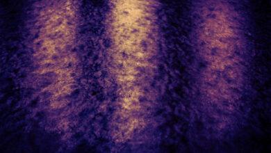 Photo of 8 ideias para uma fotografia abstrata deslumbrante