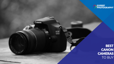 Photo of As melhores opções de câmeras Canon em 2021 (a melhor câmera para comprar!)