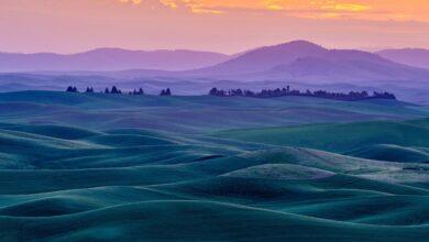 Photo of Fotografia de paisagens de belas artes: o guia completo