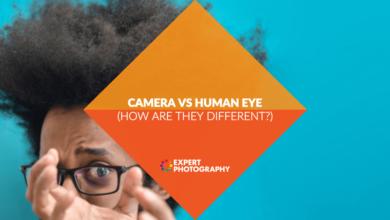 Photo of Câmera x olho humano (o olho funciona como uma câmera?)