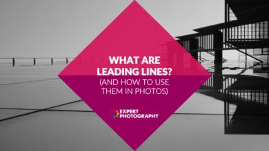 Photo of Quais são as linhas principais? (E como usá-los em fotos)