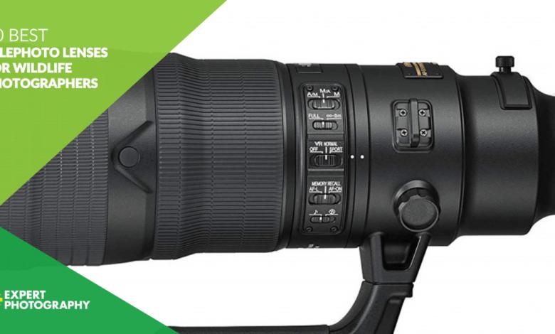 10 melhores lentes telefoto para fotógrafos de vida selvagem em 2021