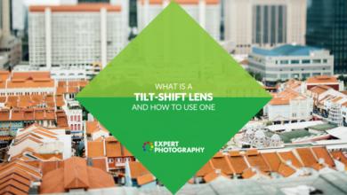 Photo of O que é uma lente tilt shift? (Como e por que usar um!)