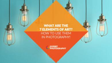 Photo of Quais são os 7 elementos da arte? (Como usá-los na fotografia!)