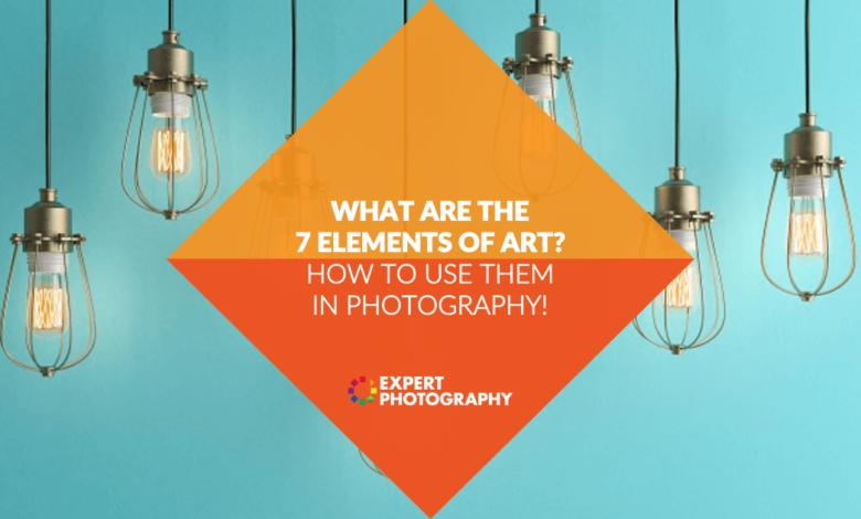 Quais são os 7 elementos da arte? (Como usá-los na fotografia!)