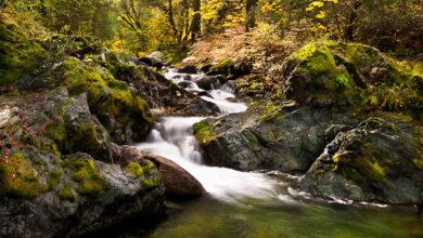 Photo of 4 dicas para fotografar belas cachoeiras mortas