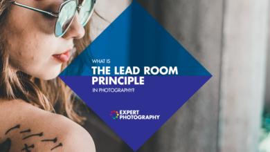 Photo of Qual é o princípio da sala principal na composição fotográfica?